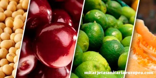 Alimentos ricos en estrógenos: nutrición y propiedades de los alimentos.