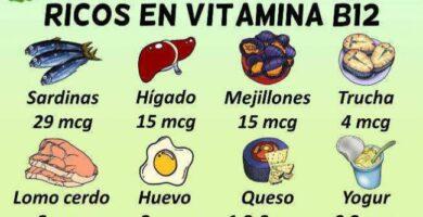ALIMENTOS VITAMINA B12
